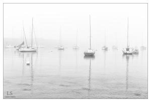 Brouillard Bretagne
